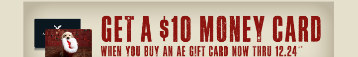 Get A $10 Money Card When You Buy An AE Gift Card Now Thru 12.24**